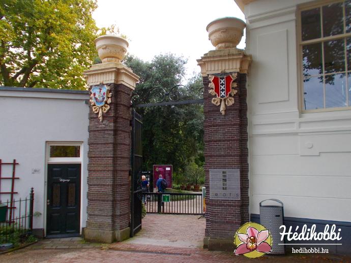 hortus-botanicus-amsterdam001