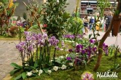 Gardenexpo 2014.