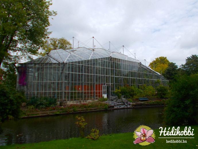 hortus-botanicus-amsterdam014