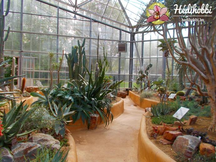 hortus-botanicus-amsterdam018