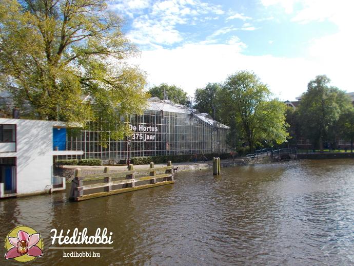 hortus-botanicus-amsterdam027