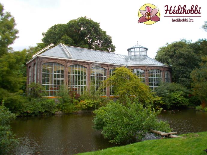 hortus-botanicus-amsterdam002