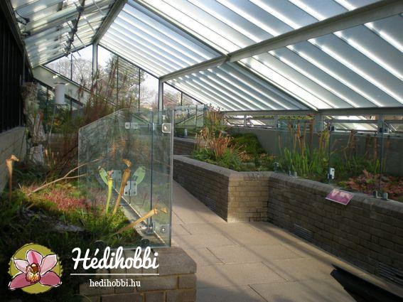2012-11-30_Kew_018