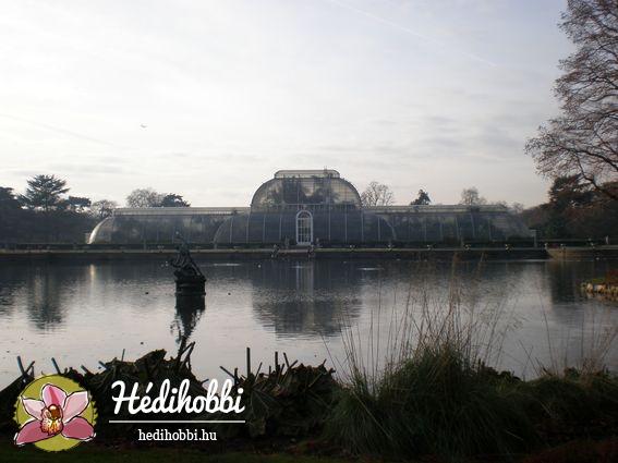 2012-11-30_Kew_022