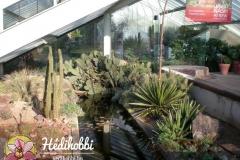 2012-11-30_Kew_005